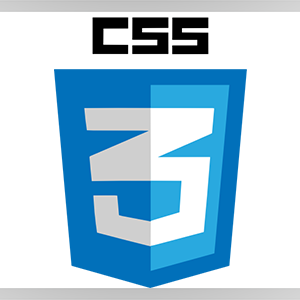 CSS3-Logo-2cu2Ro